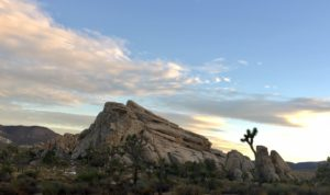 Sweeping Rock and Sky, Joshua Tree, by Michael Ashley